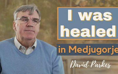 David Parkes – 治癒及轉化的故事