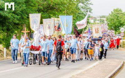 照片: 和平遊行 (2021年6月24日)